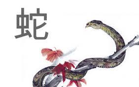 2013 año de la Serpiente
